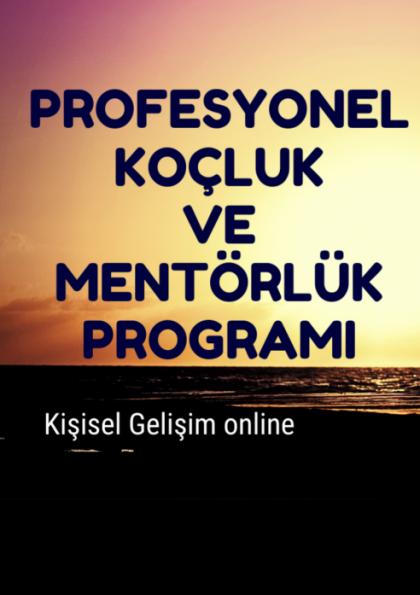 Profesyonel Koçluk ve Mentörlük Programı