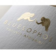 Bluesophos Yetişkin Atölyeleri Resmi