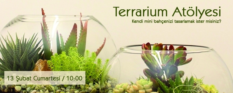 Terrarium Atölyesi